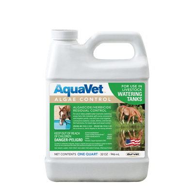 AQUAVET ALGAE CONTROL 32oz