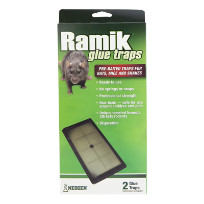 RAMIK GLUE TRAYS RAT 2pk