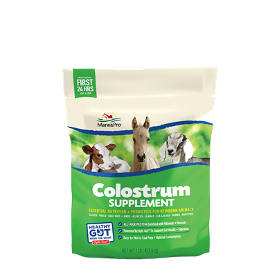 COLOSTRUM SUPPLEMENT 1LB