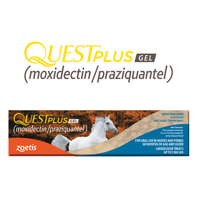 QUEST PLUS GEL SINGLE TUBE