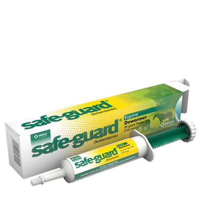 SAFEGUARD Equine Paste 25gm Syr