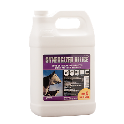 SYNERGIZED DELICE GALLON